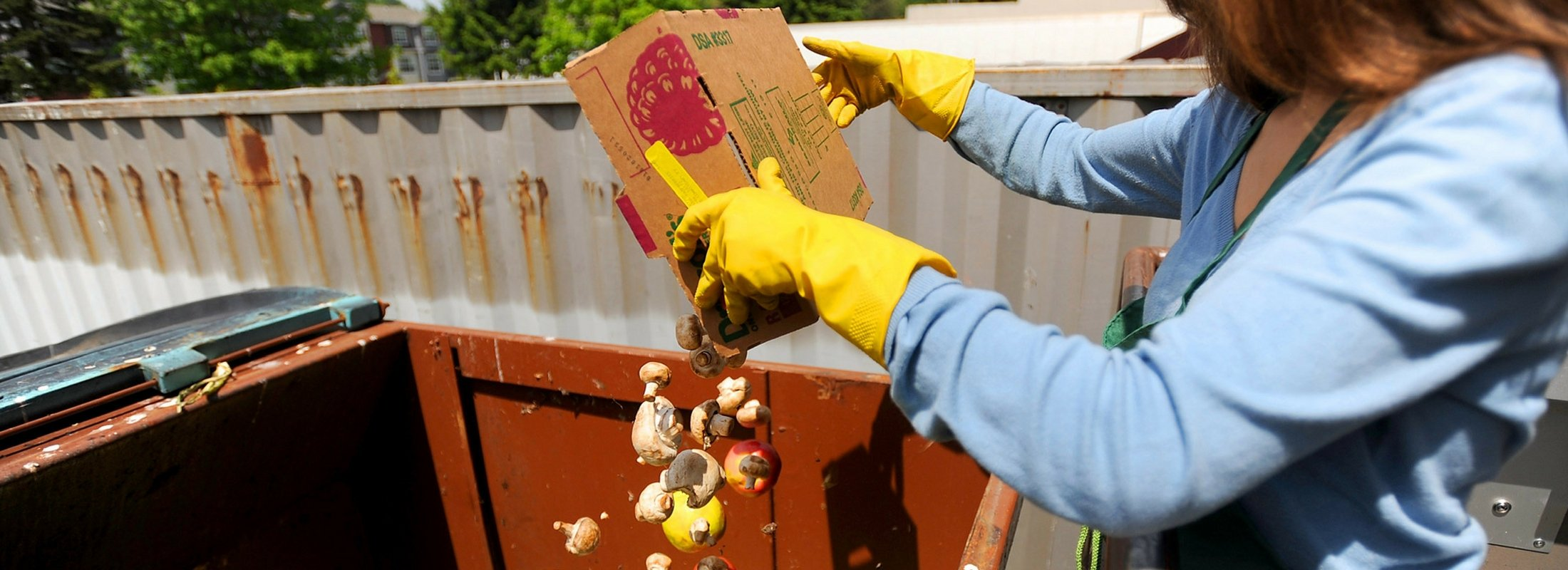 Person throwing a box of food into a compost dumpster