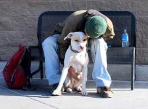 homelessmandog