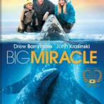DVD cover: The Big Miracle