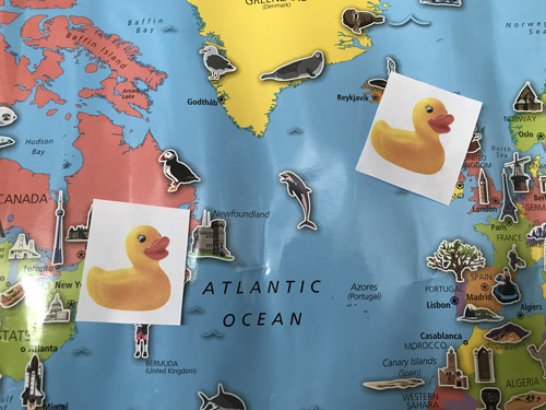 pictures of plastic ducks taped to world map